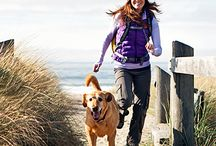 Fitness Tips for Pets