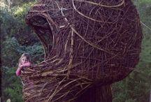 Shrubs´n nests