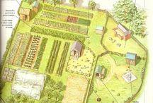 ZAHRADA - design, tipy, permaculture