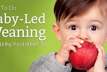 Ysabeau's board / Infant/toddler/children's health and nutrition; craft projects; party theme ideas; educational tools etc.