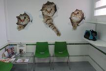 tableros veterinaria