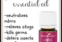 Essential oils / by Shannon Brown