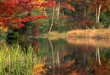 Leaf-Changing Season Along the East Coast / Fall is upon us and the leaves are beginning to radiate hues of orange, brown and gold. Several of SPM's northern destinations are ready to start celebrating the leaf-changing season and you're invited to attend the festivities! No matter where you are staying, autumn is a time to enjoy being outside, surrounded by friends and good times. For more information about all of SPM's destinations, please visit www.spmvacations.com!