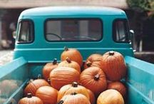 Autumn / Pretty ideas for holidays and parties in autumn.
