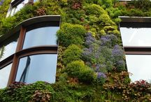 Vertical Gardens / Green - living walls, roofs and  terraces. *  Zelené steny, strechy a terasy.