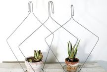 Idéer växter