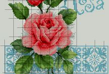 Rose a punto x