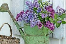 Pretty flower ideas