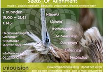Seeds of alignment, about: wisdom, prosperity, abundace, freedom, relaxation, recognition / 7 fascinating nights about experiencing the mystery of life
