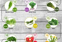 Superfoods | Super You!