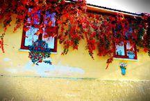 Γραφικά Σπίτια / Picturesque Houses