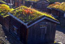 Grass Roofs - Zatravněné střechy
