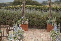 Wedding Florals & Botanicals