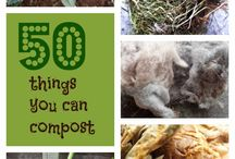 Compost / by Lynn Macdonald