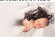 Baby,dog,birth,same day