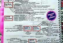 mapas mentais literatura