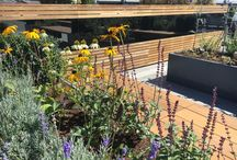 Project Ganton Street Roof Terrace