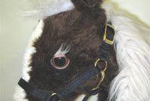Equestrian Sports - Tack
