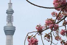 Sky Tree / Japanese tower