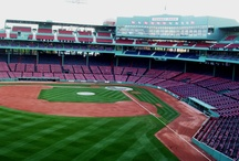 FENWAY PARK / by Debbe Daley