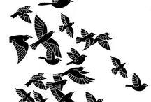 Graphic Bird