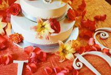 Cake / by Casey Porter