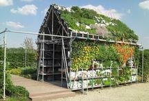 Beckett's Garden