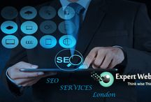 hire seo expert / want to hire best seo expert visit expertwebvision