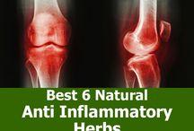 Anti - Inflametory