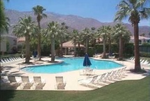 Favorite Places & Spaces / palm springs