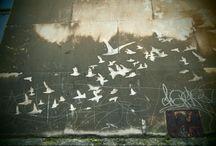 Reverse graffiti / Various forms of reverse graffiti