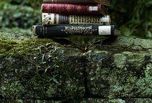 My Wonderland / let us get lost wandering through mystical forests and wonderlands