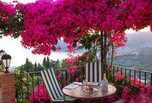 Jardim / Como um visual verde tranquiliza a alma!