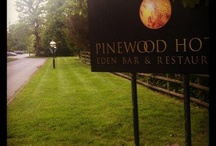 The Pinewood Hotel Main Entrance / He lovely drive before arriving at the Pinewood Hotel