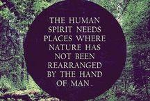 The Amazing Nature