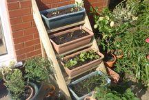 Innovative Container Gardens / ideas for creating a patio garden