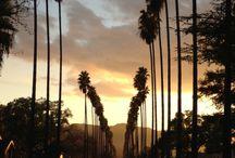 Mi lugar es California :) / A donde hoy dia, apunto llegar...