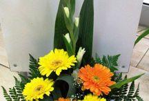 Decorar com plantas e flores