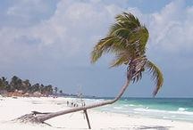 The Beach / The beautifull beach of Tulum