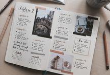 journal*