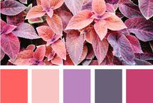 Color palettes : Red / #paint, #colors, #palette, #challenge, #värit,