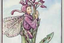 flower fariries