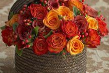 Perfumes de flores