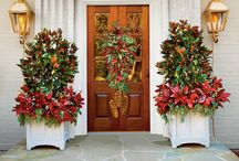 Christmas Decor / A wide variety of Christmas decor to get J's opinions on
