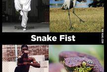 kung fu...