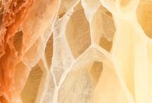 82.Food Texture