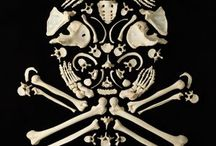 skull&bones / so creepy soo funny.