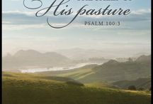 Much-loved Bible verses / by Karen Todd