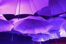 A Little Rain Never Hurt Anybody