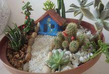 mini jardins e utensílios para eles